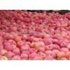 大量出售2015年烟台冷库红富士苹果残果次果0.65~1.2